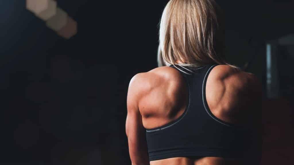 back-body-bodybuilding-28061-e1557784321621-1024x576-7233245