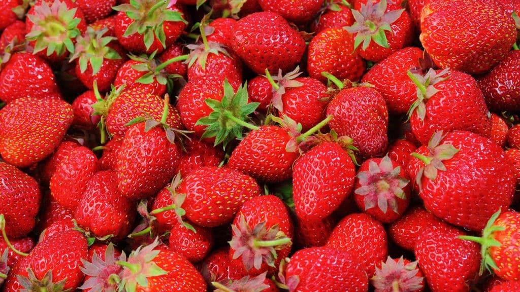 berries-diet-eating-46174-1024x576-5238550